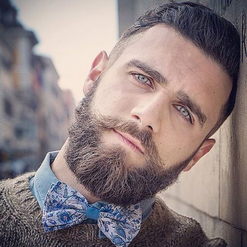 Stylish Beards - Hipster Beard