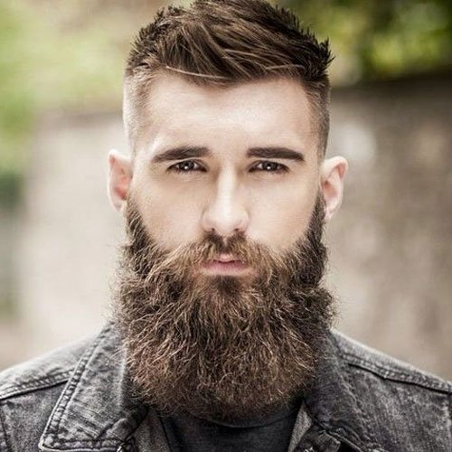 Full Beard with Fade - High Bald Fade Haircut with Thick Long Beard