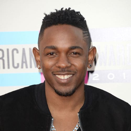Kendrick Lamar Hair - Temp Fade + 3 Lines + Short Twists + Goatee