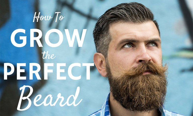 How To Grow A Nice Beard