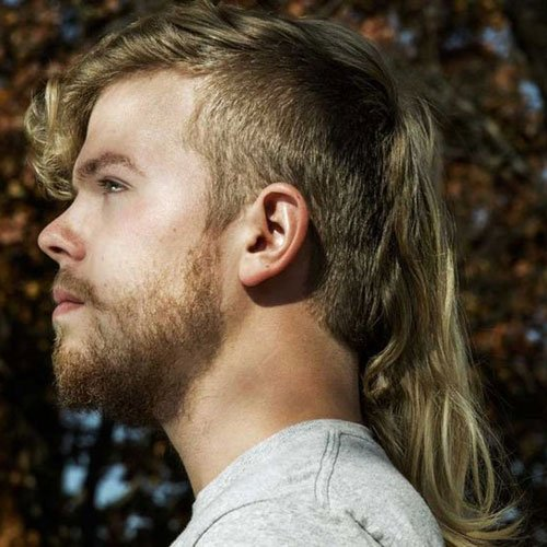 Mullet Haircut Men S Hairstyles Haircuts 2017