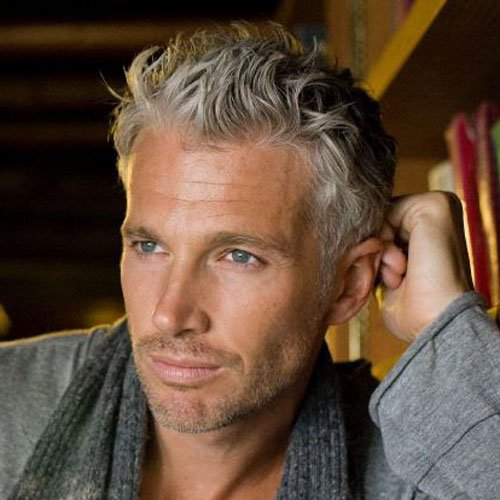 21 Best Men S Hairstyles For Silver And Grey Hair Men 2019