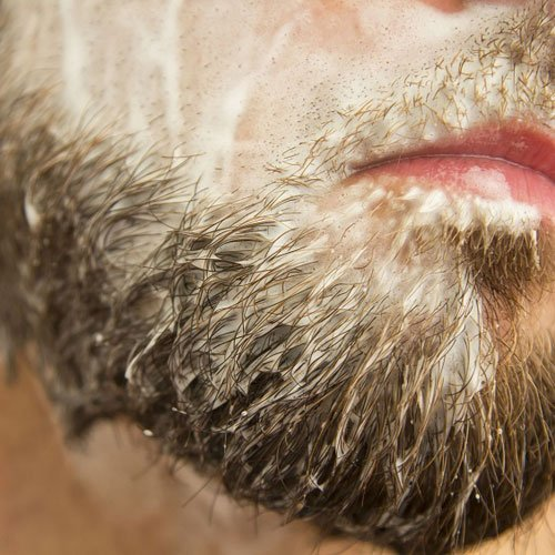 10 Best Beard Shampoos and Conditioners For A Clean Beard (2019)