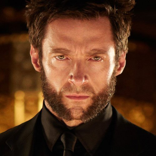 Wolverine Beard - Mutton Chops