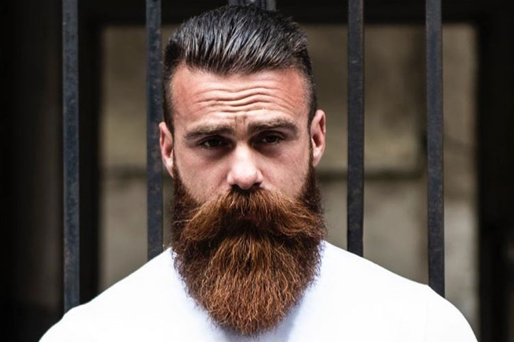 Best Men's Beard Straightener Reviews