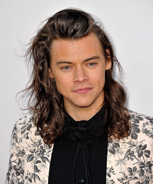 Harry Styles Long Hair